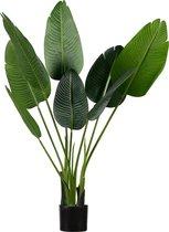 WOOOD Strelitzia Kunstplant  - Groen - 108x61x50