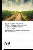 R dies de Fasciola Gigantica Chez Deux Esp ces de Lymnaeidae