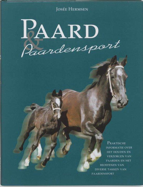 Paard & Paardensport - J. Hermsen |