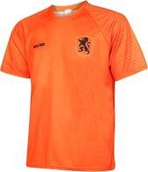 Nederlands Elftal Voetbalshirt Thuis Blanco EK 2021 Oranje Kids Unisex - Maat 128