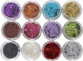 DD Nails Cosmetics - 12 verschillende kleuren hexagon glitter nailart  / acryl product / gelnagellak / nagellak.