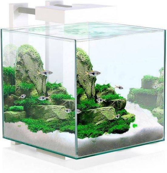 Ciano nexus pure led 15 - nano aquarium