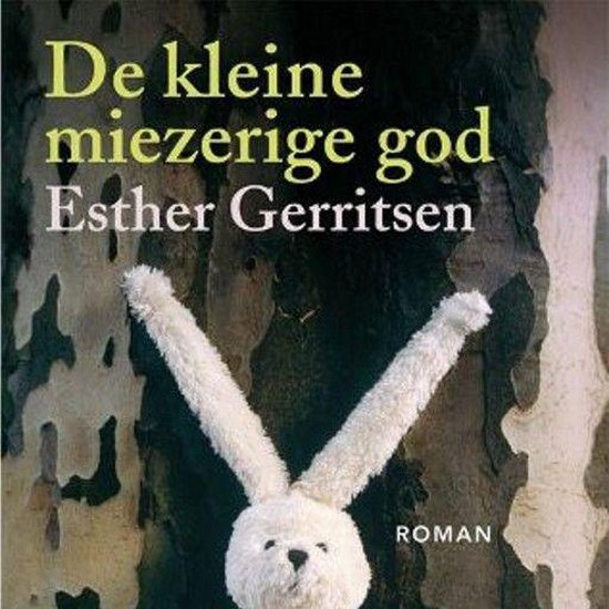 De kleine miezerige god - Esther Gerritsen | Readingchampions.org.uk