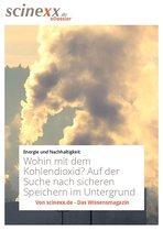 Boek cover Wohin mit dem Kohlendioxid? van Daniela Albat