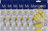 Marigold Plus M pak 6 st