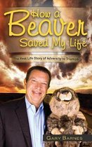 How a Beaver Saved My Life