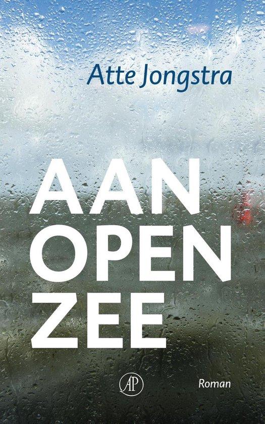 Aan open zee - Atte Jongstra  