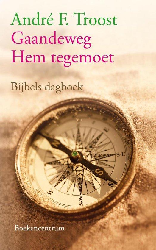 Gaandeweg Hem tegemoet - André Troost pdf epub
