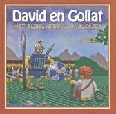De Bijbel in 1001 blokjes - David en Goliat