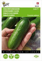 Buzzy® Komkommers Snack Iznik F1
