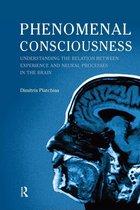 Omslag Phenomenal Consciousness