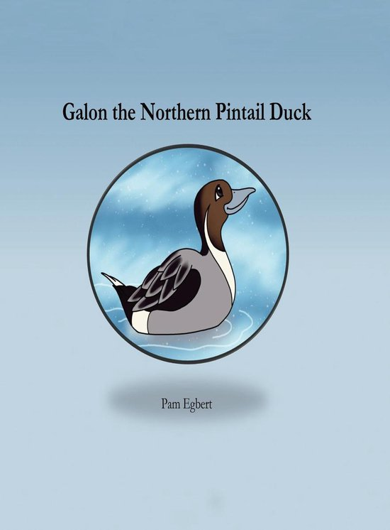 Galon the Northern Pintail Duck