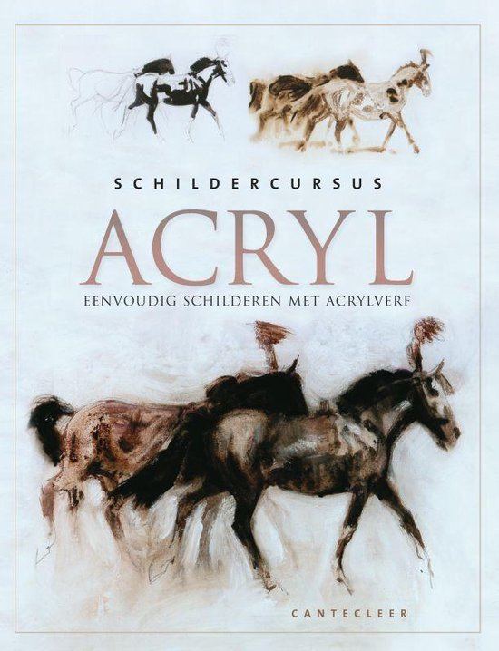 Schildercursus Acryl - Onbekend |