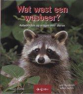 Wat wast een wasbeer