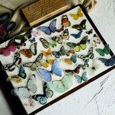 Afbeelding van 84 Vintage Vlinder Vellum Stickers - Butterfly sticker