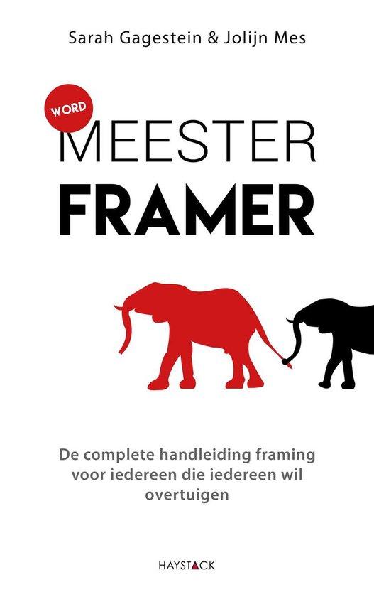 Word meesterframer - Sarah Gagestein pdf epub