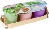 Herb Festival - 3 x kruidenpot    Complete kweekset   Incl. kruiden   Cadeau   Pastel   Pasen