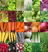 Groentezaden assortiment 30 soorten (sla, kolen, wortels, uien, radijs en kruiden) zaadlint