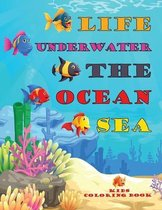 Life Underwater The Ocean Sea