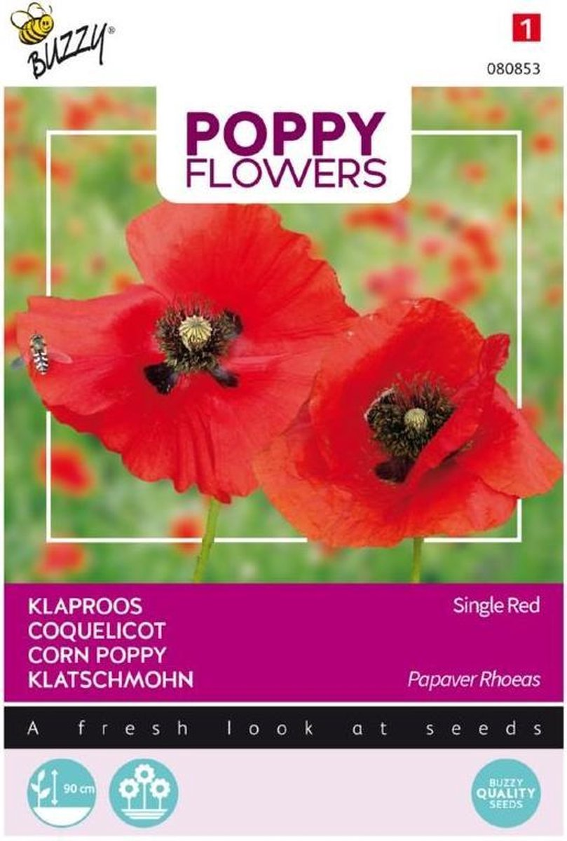 Buzzy® Poppies of the world - Klaproos Rhoeas Rood