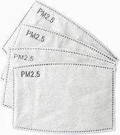 PM2.5 filter (10-pack)