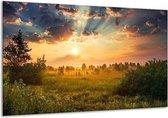 Glasschilderij Natuur veld met zonsopgang - 120 x 70 cm