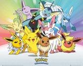 Pokemon Groep Poster 50x40cm