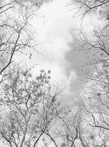 Wizard+Genius Tree Tops Vlies Fotobehang 192x260cm 4-banen