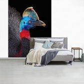 Behang - Fotobehang - Een kleurrijke kasuaris op een zwarte achtergrond - Breedte 160 cm x hoogte 220 cm