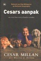 Cesars aanpak / druk 1