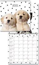 Dogs Kalender 2021 - maandkalender - 29x29cm