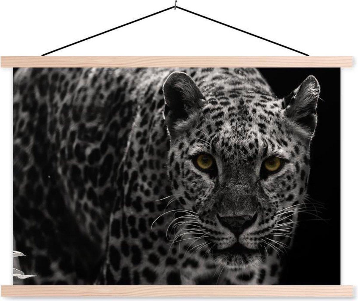 Close-up starende luipaard op een zwarte achtergrond textielposter latten blank 60x40 cm - Foto print op schoolplaat (wanddecoratie woonkamer/slaapkamer)