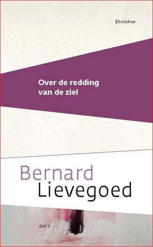Boek cover Over de redding van de ziel van Bernard Lievegoed (Paperback)