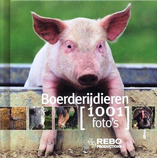 Afbeelding van het spel Kinderboeken Rebo - Boerderijdieren, 1001 foto's.