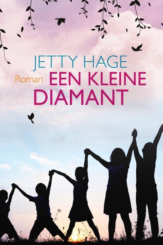 Een kleine diamant - Jetty Hage  