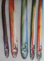 stropdas - set van 5 stuks - vissen - carnaval - studentenvereniging - visvereniging