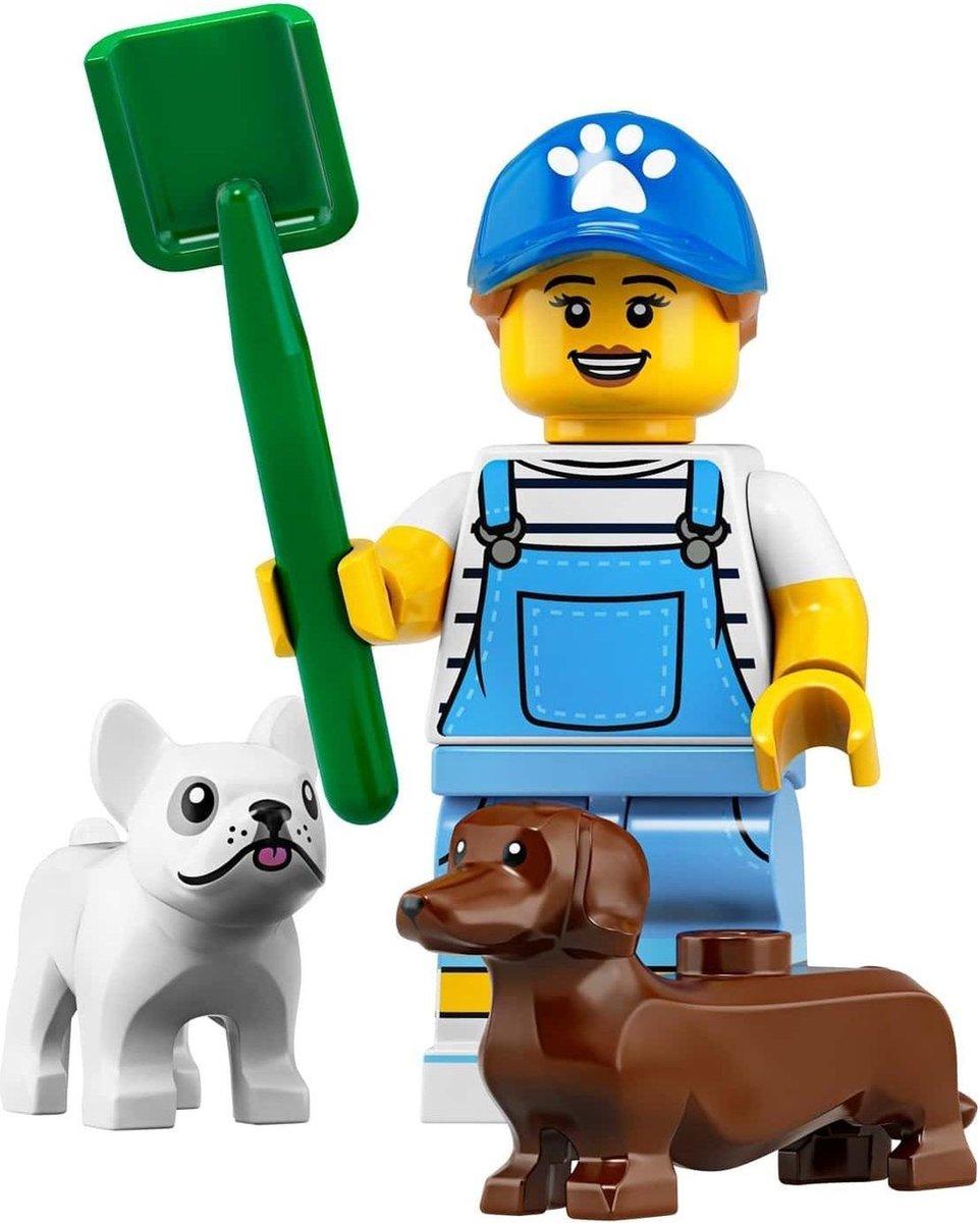LEGO® Minifigures Series 19 - Hondenoppas 9/16 - 71025