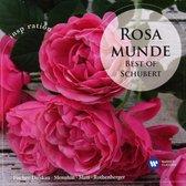Various - Romantic Schubert