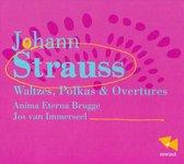 Waltzes, Polkas & Ouvertures