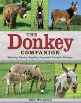 Donkey Companion