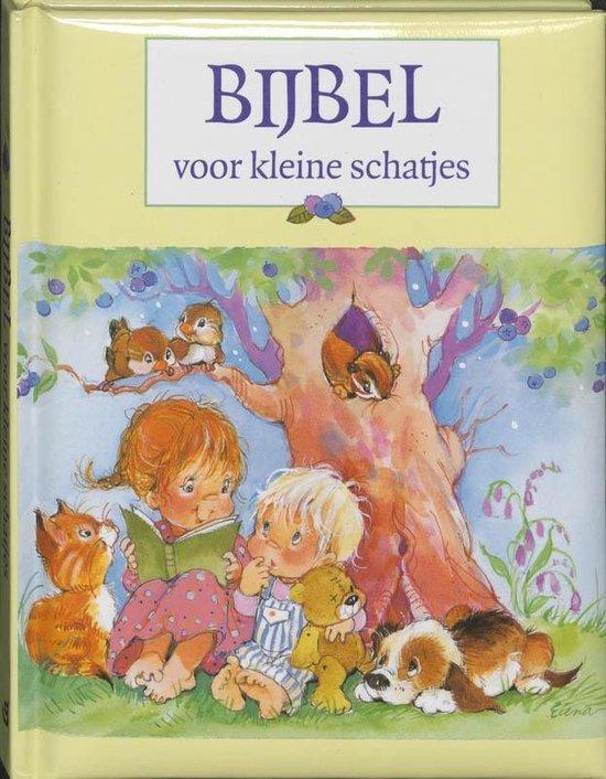 Bijbel voor kleine schatjes - J.C. Galvin  