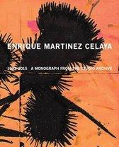 Enrique Martinez Celaya - 1992 - 2015