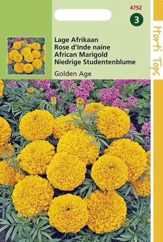 Hortitops Zaden - Tagetes Erecta Nana Golden Age