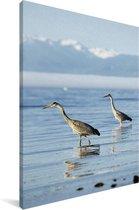 Reflectie van twee Paradijskraanvogels in het water Canvas 20x30 cm - klein - Foto print op Canvas schilderij (Wanddecoratie woonkamer / slaapkamer)