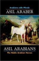 Asil Arabians