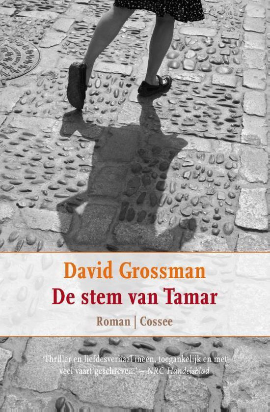 De Stem Van Tamar - David Grossman |