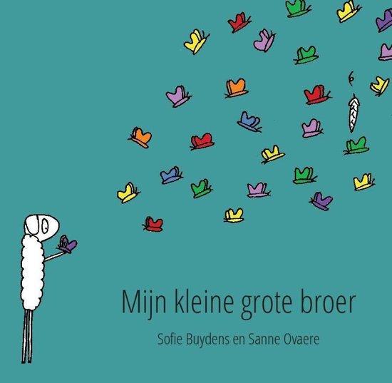 Mijn kleine grote broer - Sanne Ovaere  