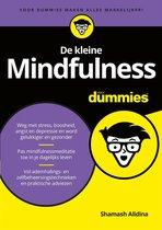 Voor Dummies - De kleine mindfulness voor dummies