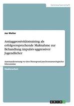 Antiaggressivitatstraining als erfolgversprechende Massnahme zur Behandlung impulsiv-aggressiver Jugendlicher