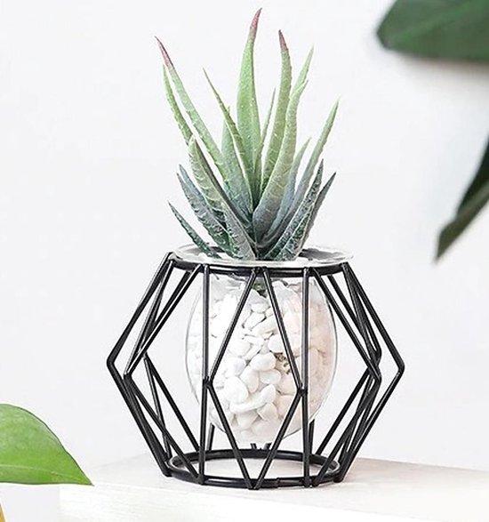 BaykaDecor Diamant Vorm Vaas - Woondecoratie - Nordic Design Terrarium Planter - Metaal En Glas Vaas - Elegant Cactus Vaas - Zwart